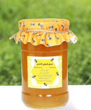 عسل طبیعی و خام گشنیز درکام